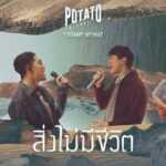 คอร์ดเพลง สิ่งไม่มีชีวิต – POTATO ft. แสตมป์ อภิวัชร์